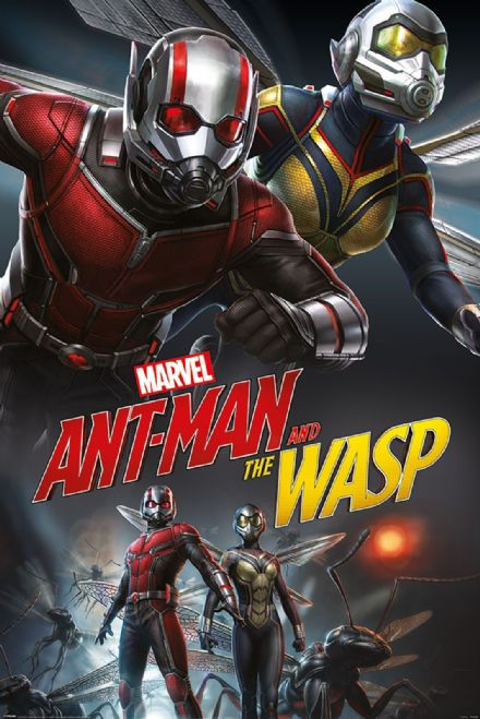 Ant-Man & Wasp, Dynamic 61x91,5cm Movie Poster